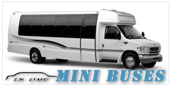 Mini Bus rental in Dallas, TX