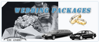 Dallas Wedding Limos